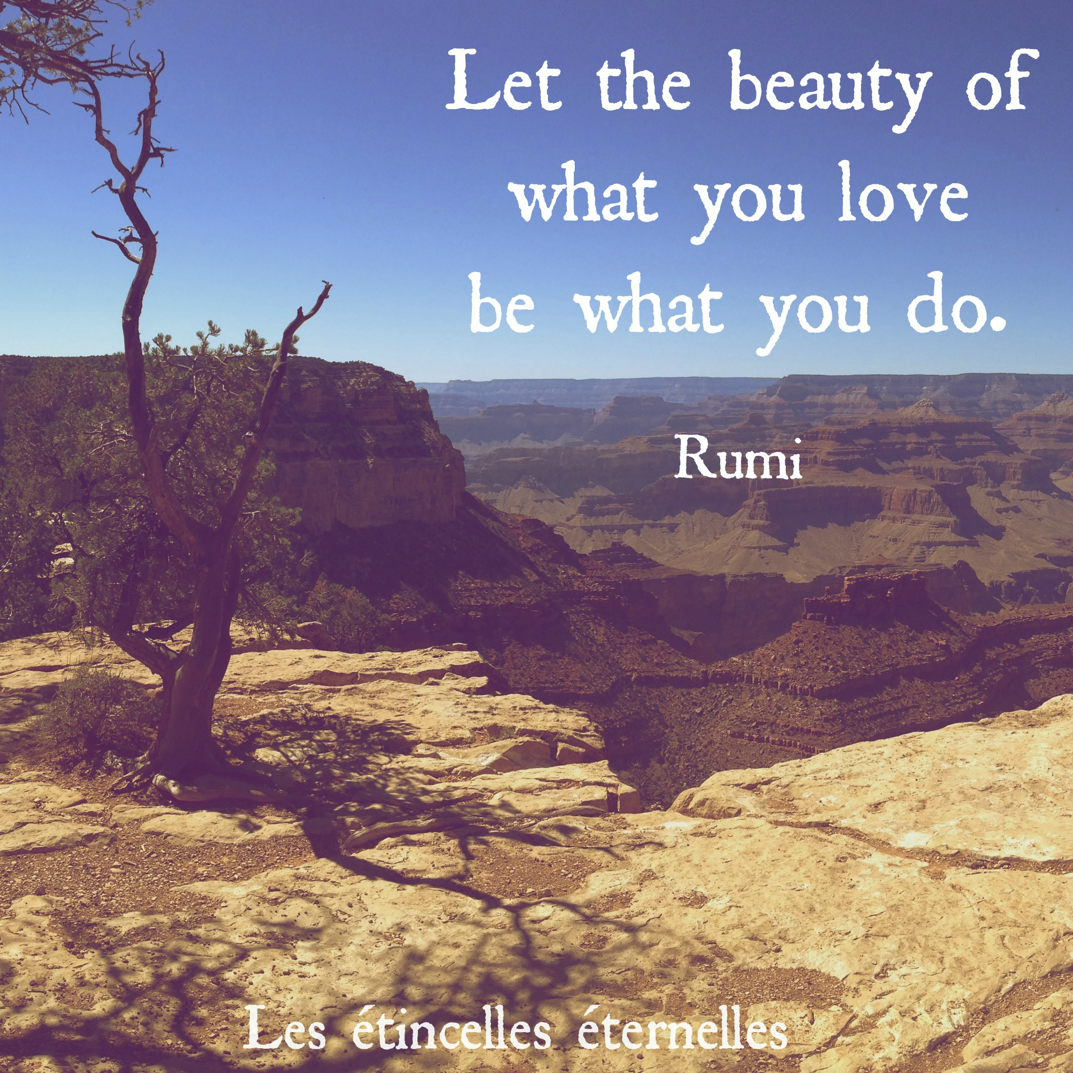 let-the-beauty-of-what-you-love-be-what-you-do-rumi