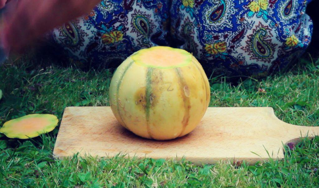 comment-couper-melon-facilement-en-toute-securite-2