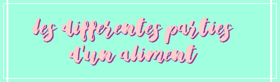 parties-aliments-traduction-anglais-francais